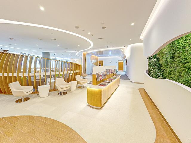 Skyteam Lounge, Dubai living wall